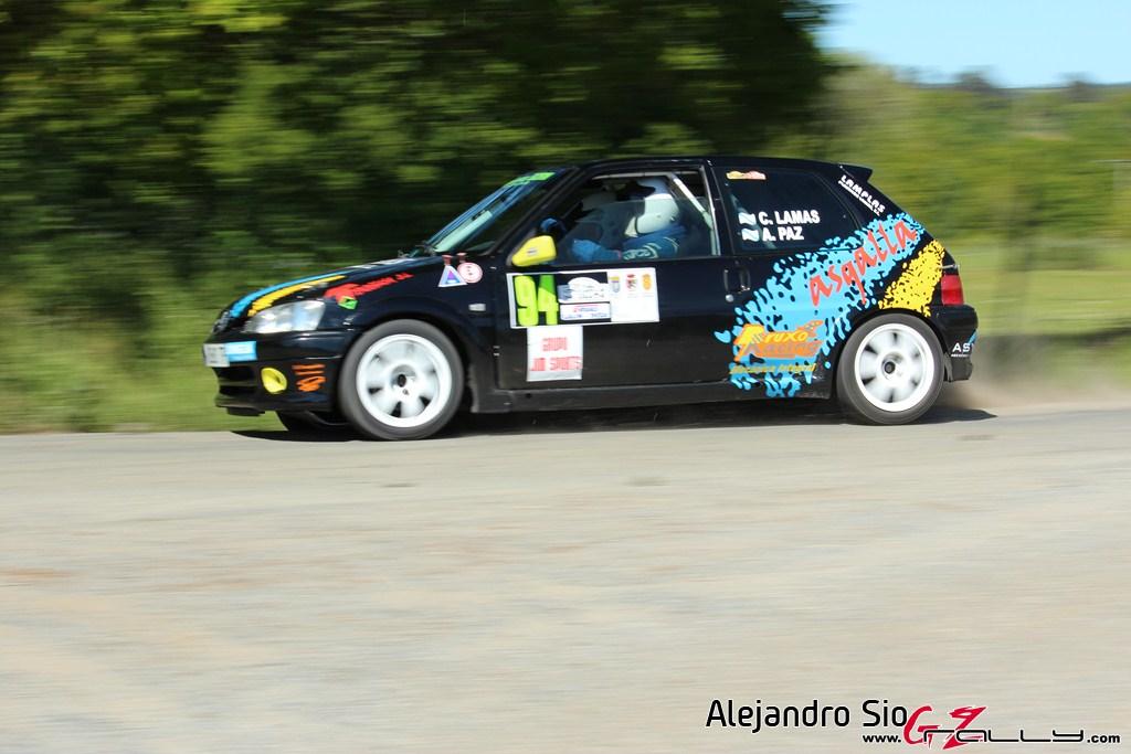 vi_rally_comarca_da_ulloa_165_20150307_1778676707