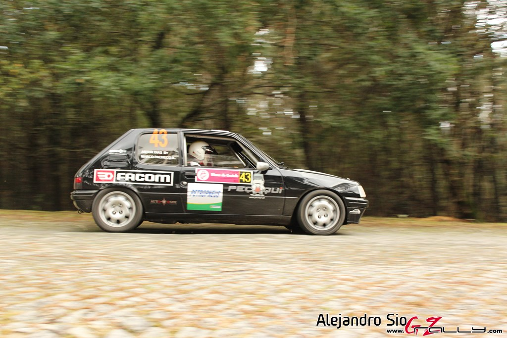 ii_rally_viana_do_castelo_60_20150308_1862391555