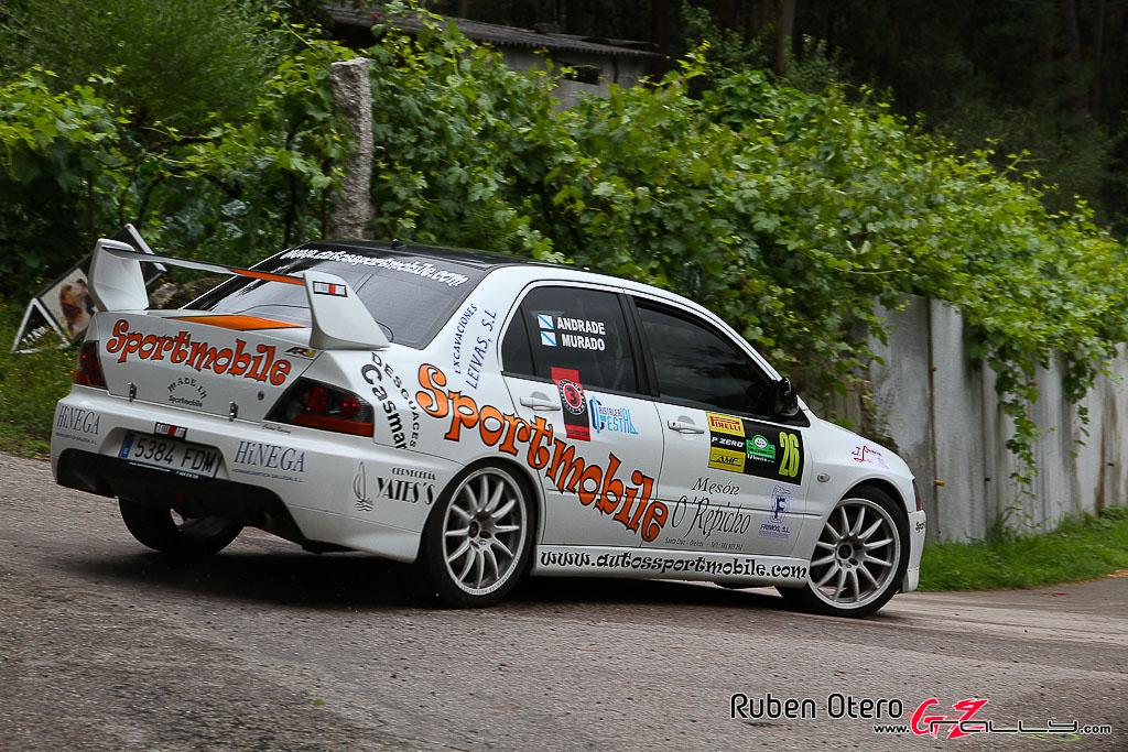 rally_sur_do_condado_2012_-_ruben_otero_147_20150304_1068040948