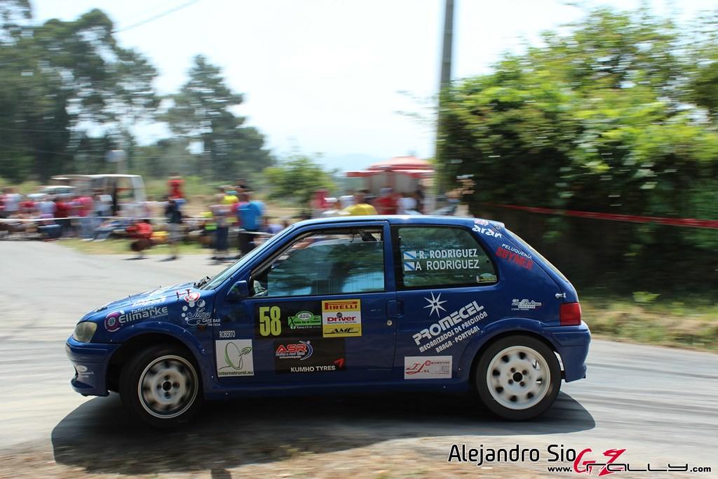 x_rally_sur_do_condado_74_20150307_1968183310