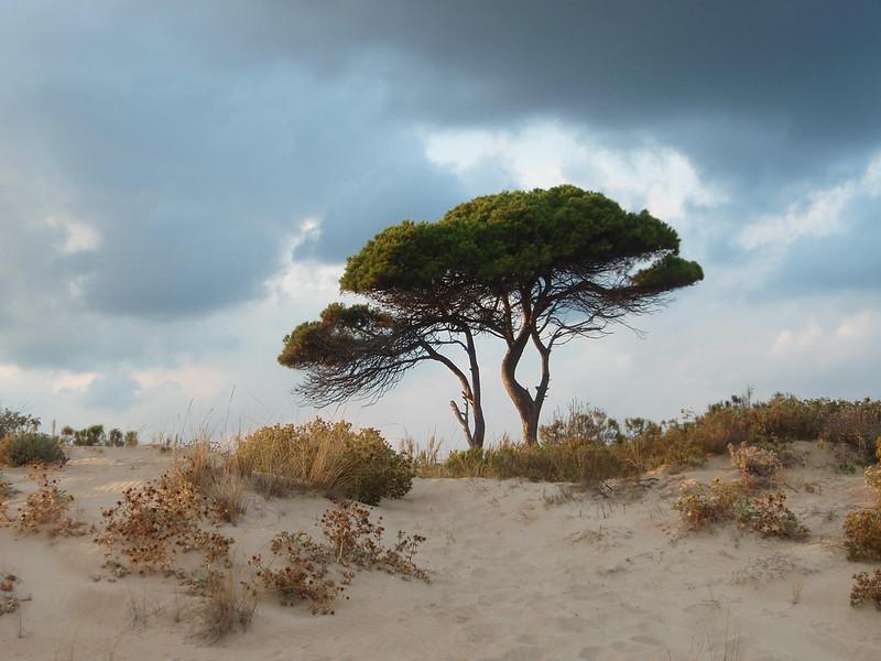The best nudist beaches in Spain