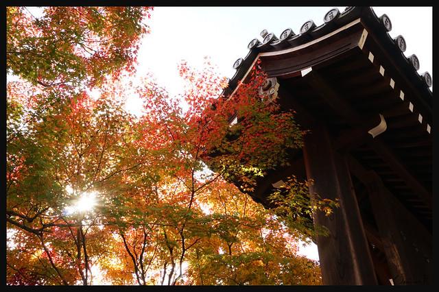 日本京都[左京]-南禪寺.53