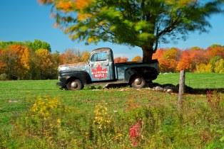 truck + tree + autumn