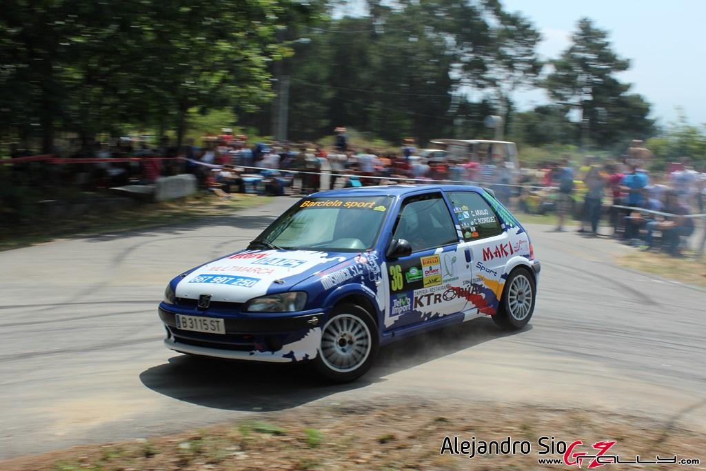 x_rally_sur_do_condado_199_20150307_1039631414
