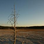 57 -Yellowstone