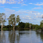 02 Viajefilos en Australia, Kakadu NP 061