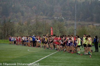 2016 XC State