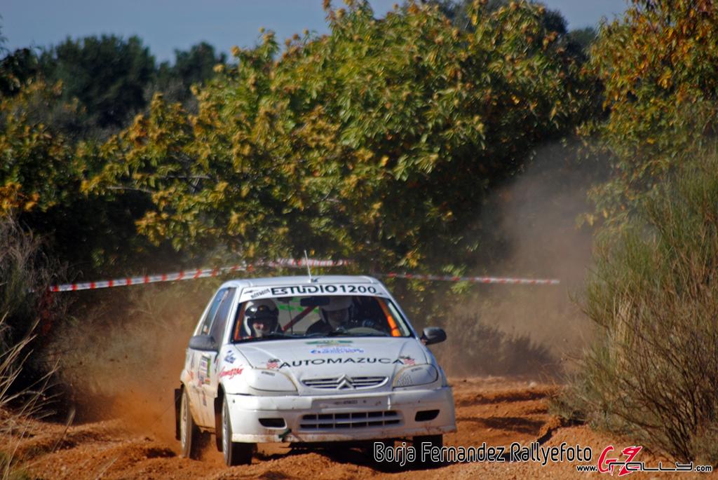 vi_rallysprint_de_tierra_de_sariegos_-_borja_fernandez_13_20161101_1364583210