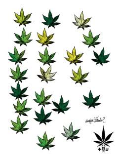 Andyca Warhol