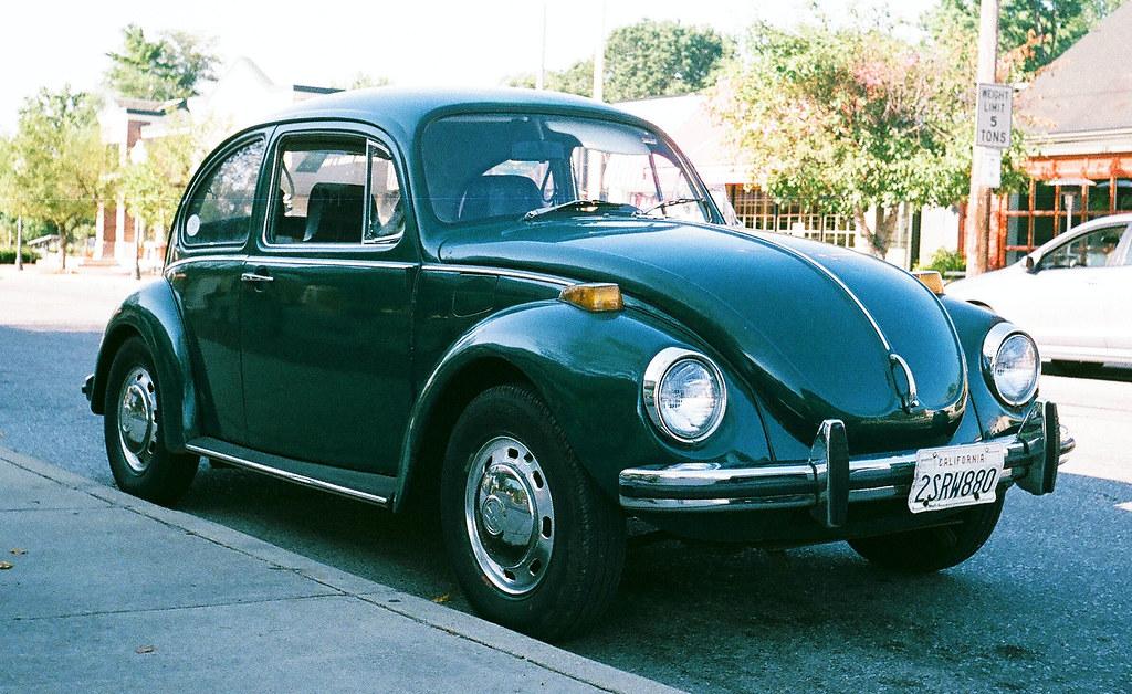 Beetle bug (crop)