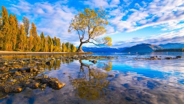 Lake Wanaka - New Zealand Travel Destinations