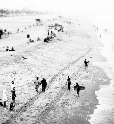 Beach scene, tilt-shift