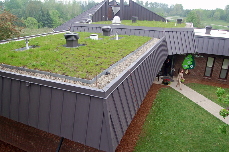 Laurel's green roof