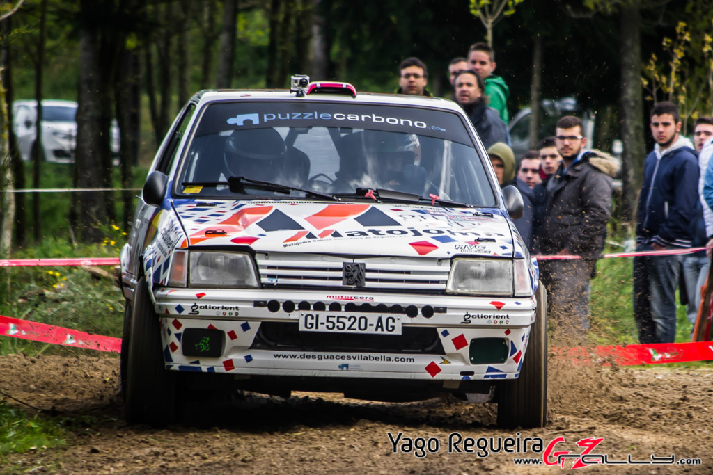 rally_de_curtis_2014_-_yago_regueira_55_20150312_1727952385