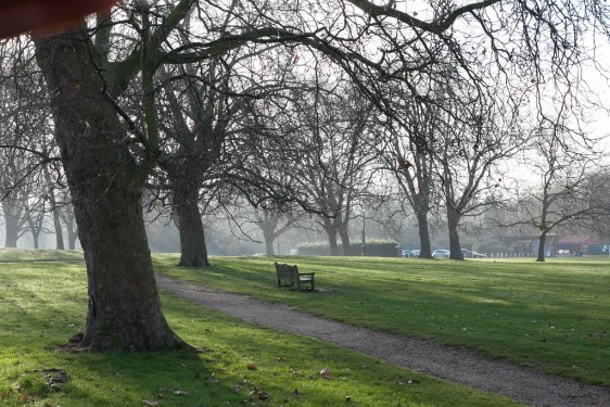 Peckham Rye Common on a misty day in December 2016