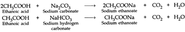 Carbon and its Compounds Class 10 Notes Science Chapter 4 7