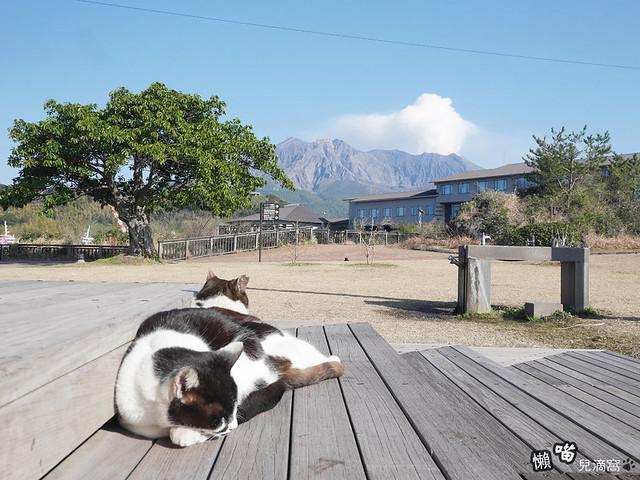 櫻島熔岩海濱公園