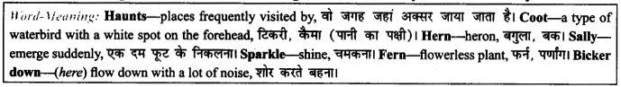 NCERT Solutions for Class 9 English Literature Chapter 6 The Brook 6