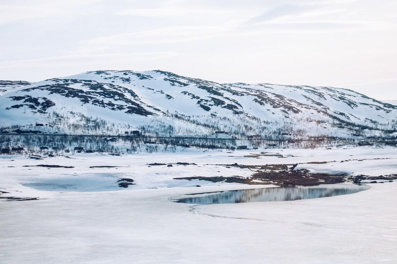 Myrdal till Oslo över trädgränsen - reaktionista.se