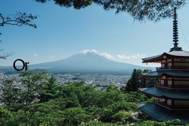 日本靜岡景點 新倉山淺間神社、新倉山淺間公園,就是要面對面伴隨淺間神社看著富士山,富士山周邊必來景點及櫻花勝地