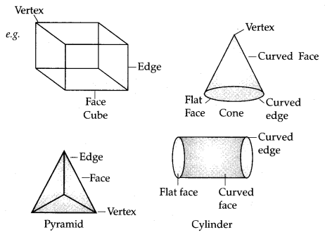 Visualising Solid Shapes Class 7 Notes Maths Chapter 15 2