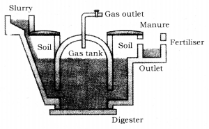 Sources of Energy Class 10 Notes Science Chapter 14 4