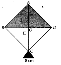 NCERT Solutions for Class 9 Maths Chapter 12 Heron's Formula Ex 12.2 A7