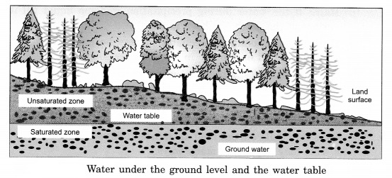 Water Class 6 Notes Science Chapter 14 4