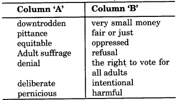 RBSE Solutions for Class 9 English Insight Chapter 6 Prospects of Democracy in India 1