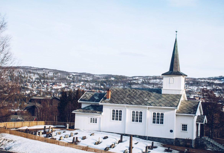 Myrdal till Oslo tåg - reaktionista.se