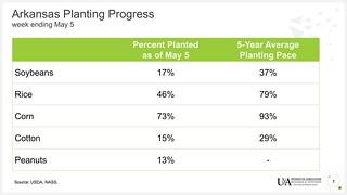 Crop Progress as of May 5