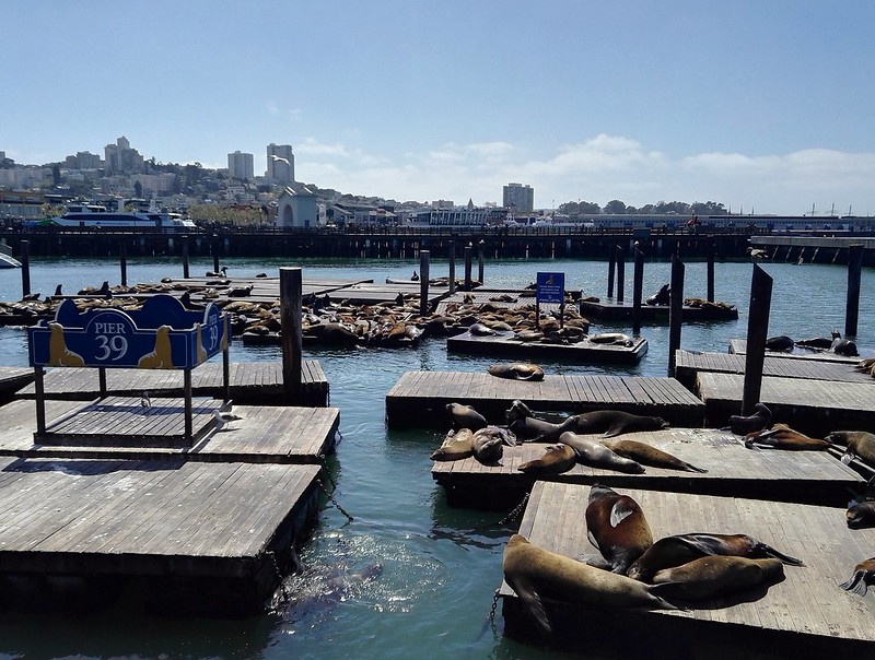 Pier 39, San Francisco, California, Usa.