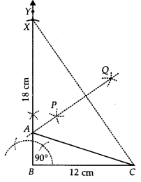 NCERT Solutions for Class 9 Maths Chapter 11 Constructions Ex 11.2 q5