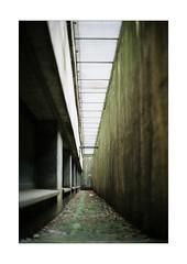Narrow Corridor