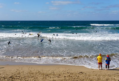 Busy beach #marineexplorer