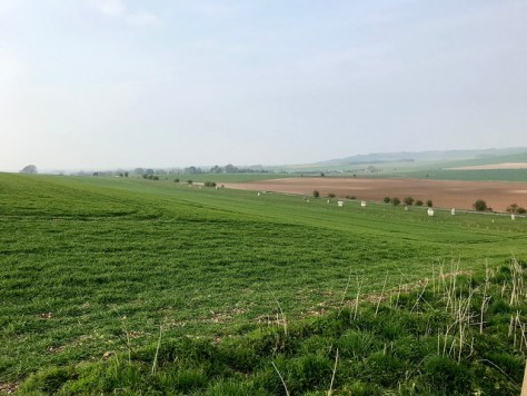 Avebury Walk day 1