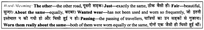 NCERT Solutions For Class 9 English Literature Chapter 7 The Road Not Taken 5