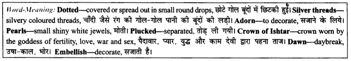 NCERT Solutions for Class 9 English Literature Chapter 12 Song of the Rain 3