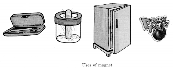 Fun with Magnets Class 6 Notes Science Chapter 13 1