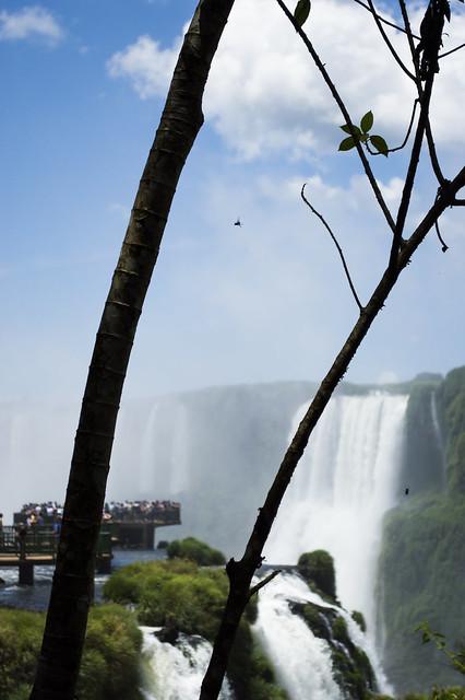 Iguazu 2016-1310