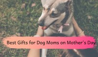 best gifts for dog moms on mothers day