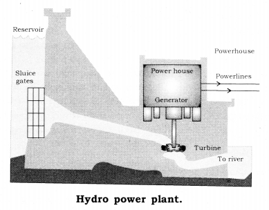 Sources of Energy Class 10 Notes Science Chapter 14 3