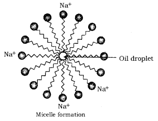 Carbon and its Compounds Class 10 Notes Science Chapter 4 30