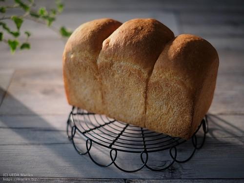 ローズマリー酵母のトマトパン 20190525-DSCT3690 (2)