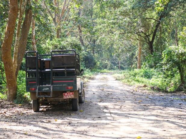 Safari en el Parque Nacional de Chitwan