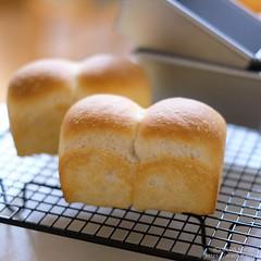 とぎ汁酵母のミニ食パン 20190519-DSCT2669 (2)