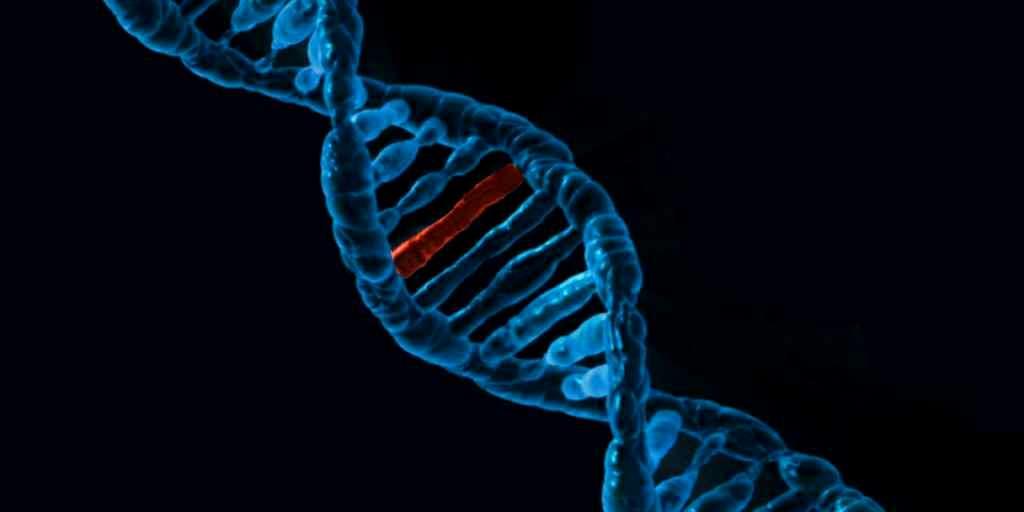 une-mutation-ADN-autisme