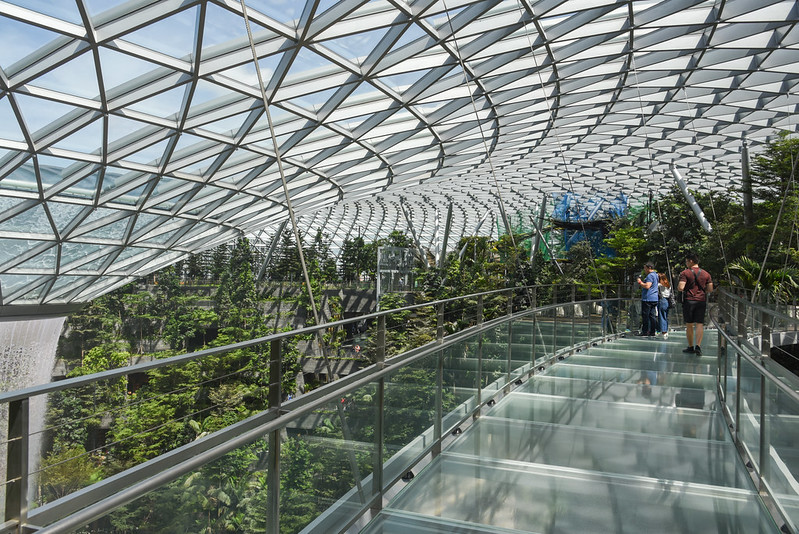 canopy bridge - jewel changi airport
