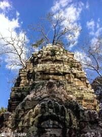 Cambodia - 0275