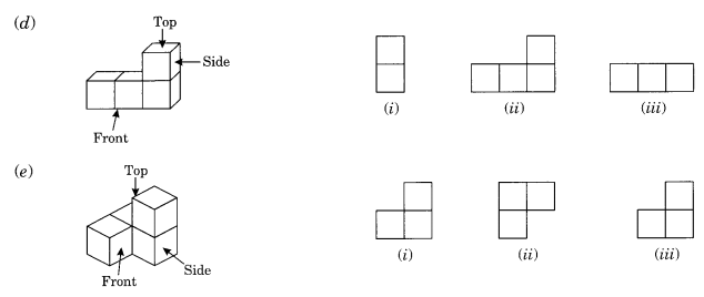 NCERT Solutions for Class 8 Maths Chapter 10 Visualising Solid Shapes Q3.1